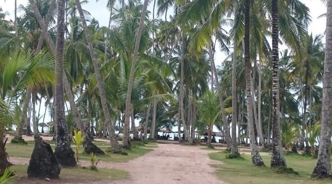 Playa Medina y la península de Paria